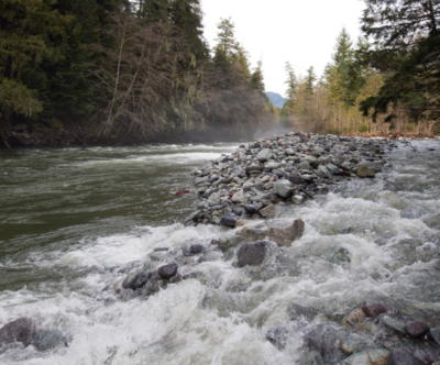 Services Page STREAMFLOW